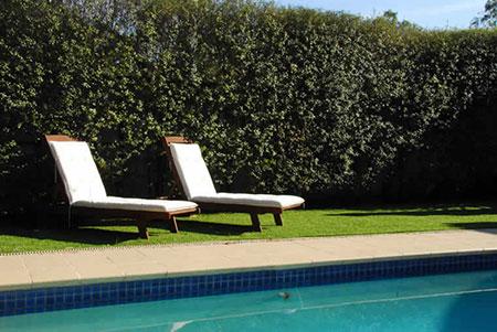 Easy Turf Swimming Pool